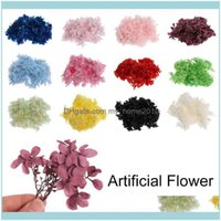 Festive Party Supplies Garden10G Bag Dried Hydrangea Flower Head Material Natural Fresh Preserved Flowers For Diy Home Decoration Decorative