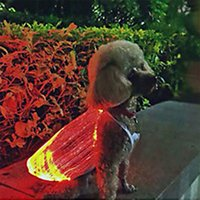 Teddy Dog Apparel 2 Colors 4 Sizes LED Glowing Cat Dog-Apparels USB Rechargeable Colorful Anti-lost Luminous Pet Supplies Dog-Anti-loss Cothes