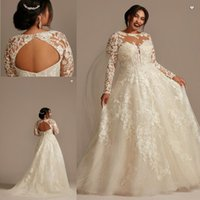 Oleg cassini Plus Size Wedding Dresses 2021 Full Applique Backless Lace Illusion Long Sleeve Sheer O-neck Country Beach Bridal dress
