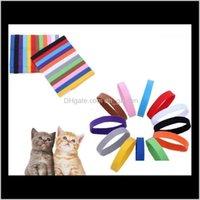 Tag, ID-Karte liefert Hausgarten-Drop-Lieferung 2021 Kragen-Identifikation-ID-Halsband-Band für Welp-Welpe-Kätzchen-Hund-Haustierkatze Veet Praktische