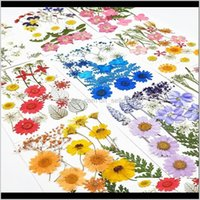 Decorative Flowers Wreaths Festive Party Supplies Home & Garden Drop Delivery 2021 1Bag Mixed Pressed Dried Flower For Face Sticker Tips Nail
