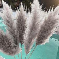 6/15 stücke Bulrush Natürlich Getrocknete Pampas Gras Phragmiten Künstliche Pflanzen Hochzeit Blume Bündel für Wohnkultur Gefälschte dekorative Blumen Kranz
