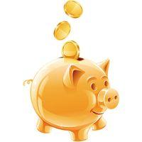 Link de pagamento ao cliente VIP para itens não listados personalizados por favor msg fotos através da ordem colocada