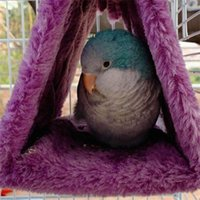 الحيوانات الأليفة الببغاء الطيور أرجوحة شنقا الكهف قفص تكبب هت خيمة سعيد السرير بطابقين لعبة 557 r2