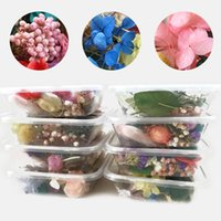 Box DIY Real Dried Flower Dry Plants For Candle Epoxy Resin Pendant Necklace Jewelry Making Craft Home Decor Decorative Flowers & Wreaths