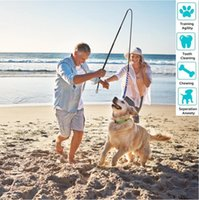 Interactive Flirt Pole Toy for Dogs Chase and Tug of War,Durable Teaser Wand with Pet Fleece Rope Tether Lure to Outdoor Exercise & Training from small  large dog