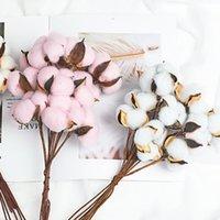 Flores de algodón seco inmortales naturales Plantas artificiales Rama floral para la decoración de la fiesta de bodas Fake Home Decorative Guirnaldas