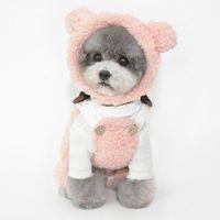 Ropa para perros otoño e invierno sombreros mascotas cachorro gato accesorios