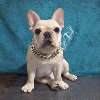 Gold Chain Collar For Dog Tone Cut Curb Cuban Pet Link Customize Wholesale Jewelry Pets Gift Necklace Neck Golden Collars & Leashes