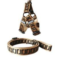 Pet Cat Collar Set Brief Gedruckt Verstellbarer kleiner Hund Kabelbaum und Leine Outdoor Reisesitzgürtel Teddy-Halsband-Leashes