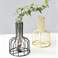 Hydroponic Cabinet Plated Iron Vase Retro Tabletop Home Deco...