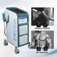Corps professionnel Emslim Corps minceur Sculpture pour le bâtiment musculaire et les équipements Emsliming Machine de combustion de la graisse