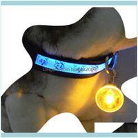 Collars Leashes Pet Supplies Home & Gardenpet Illuminated Waterproof Safety Light Pendant Bell Cat Night Walking Lights Dog Pendants Flashin