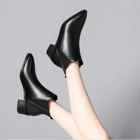Boots Short Women's Autumn And Winter Pointed Thick Heel Middle Korean Version