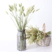 20pcs naturale fiori secchi di colore coda di colore erba mazzo reale bouquet di fiori per la casa matrimonio di matrimonio sfondo decorazioni decorative wreath wreath wre