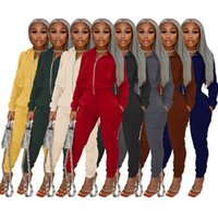 Designers Clothes tracksuits 2021 Suede hooded long sleeve sports two piece set women's solid color leisure suit Print