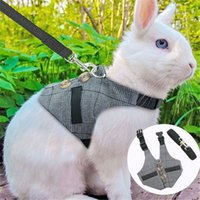 الخريف أرنب الكلب الصدرية الحيوانات الصغيرة الهامستر الملحقات pet جرو تسخير المقود الرصاص مجموعة للنمس غينيا