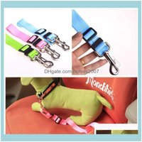Collars Supplies Home & Gardenadjustable Nylon Puppy Hound Leashes Vehicle Lead Dogs Pet Leash 6 Colors Cat Dog Car Safety Seat Belt Harness
