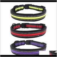 Halsbänder Leinen Hund Nacht Wanderkette Reflektierende solide Nylon Haustier Safe Breakaway Collar Einstellbar Ultraleicht Design RPVUL qtuvg