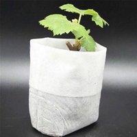Planters & Pots 100pcs set Seedling Raising Bag Nursery Pot Plant Flowers Pouch Garden Supply 4 Size Non-woven Grow Bags