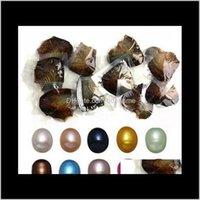 Grânulos soltos entrega de jóias entrega 2021 Atacado tingido pérolas naturais dentro da festa em massa aberta em casa pérola ostras com embalagem de vácuo Pz