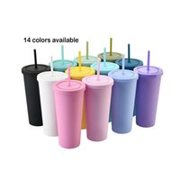 Latest Arrival 22oz Matte Colored Acrylic Skinny Tumbler Mug Double Wall Plastic Cup Custom Colors Acceptable WLL838