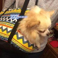 Dog Car Seat Covers Female Retro Pet Bag Out Portable Shoulder Fashion Women'S Handbags