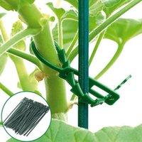 Plantadores Potes 50 unids 13 / 17cm Planta de plástico ajustable Cable Lazos de jardinería Herramientas de jardinería para jardín Soporte de montaje de árboles Vid Tomate Tallo Clips