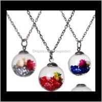 Pendant Necklaces & Jewelry Drop Delivery 2021 Wish Wishing Mes Drift Bottle Pendants Crystal Dried Flower Necklace For Women Float Locket Li