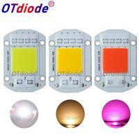 Bulbs Smart IC AC COB LED Strip 20W 30W 50W 110V 220V Driverless DIY Flood Light Hight Power Diode Warm White Full Spectrum