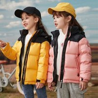 TNF kids Classic letter embroidery Mens down Coat Printing Parka Winter Jacket children Parent-child outfit Jackets Feather Overcoat north 1996