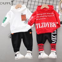 Spring Kids Clothes Baby Boys Costume Casual Tracksuit Tops Pants Children Hooded Outfits Girls Infantil born Set 210507