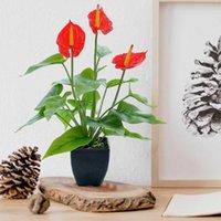 الزهور الزهور أكاليل محاكاة النباتات بونساي الاصطناعي كالا زنبق بوعاء المنزل مكتب سطح المكتب حلية وهمية الدعائم