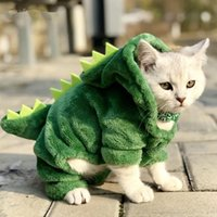 Costumes de dinosaures d'animaux de compagnie Costumes de dinosaures drôles Manteau hiver chaleur chat en molleton chat pour petits chats chaton kitten hoodie chiot vêtements xs-xxl