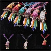 قلادة القلائد الملونة كريستال الببغاء قلادة الدانتيل سلسلة أصدقاء الحيوانات الأليفة الطيور المعلقات للنساء الأزياء والمجوهرات هدية 162079 W3AQB 9AE6Q