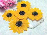 Guirnaldas de flores decorativas 120pcs 5 cm prensado rojo / amarillo Flor de girasol de girasol Herbario para joyería Pendientes de anillo colgante haciendo un