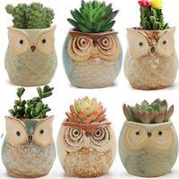 Lindo Mini Cerámica Cerámica Owl Flowers Potes Plantadores Retro Creativo Suculents Nursery Holder Floral Organizador Suministros de jardín NHB6205