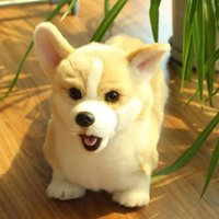 حيوانات مادية الرماية الكلب تشاي الكرتون كوكي أفخم دمية الويلزية القلطي