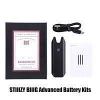 Stiiizy Biiig Advanced Premium Vaporizer Starter Kit 550mAh Rechargeable Battery Vape Pen Wit USB Cable For Thick Oil Pods