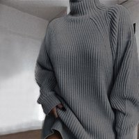 Frauen Pullover Winter Damen S langarm Rollkragen Hohe Taille Lose Kleid Pullover Jumper Fashion Sweter Damski
