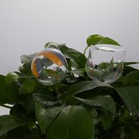 정원 식물 물을 물을 전구 장치 실내 자동 홈 셀프 글로브, 조류 셰이프 핸드 블로우 맑은 꽃병