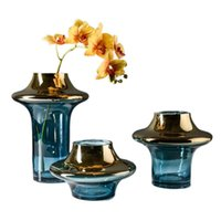 Nordic Style Hydroponics Glas Vase Dekoration Modern Luxuskunst Große Tisch Wohnzimmer Blume Anordnung Geschenkvasen