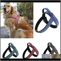 Collars Leashes Pet Supplies Home & Gardenreflective Dog Vest Harness Walking Training Strap For Puppy Adjustable Doggie Chest Leash Lead Bel