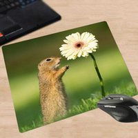 Mouse Pads & Wrist Rests XGZ Small Pad Cute Squirrel Rubber Anti Slip Animal Pc Notebook Computer Game Desk Mat