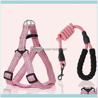 Collars Leashes Supplies Home & Gardenpet Nylon Collar Leash Cat Harness Aessories Personalized Adjustable Puppy Chest Strap Dog Vest Harnes