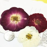 Decorative Flowers & Wreaths Large Rose Flower DIY Epoxy Dried Cell Phone Case Specimens For Make Up Props 60Pcs