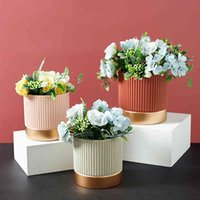 Morandi cemento flowerpot stile nordico stile colorato banda cilindrica forma flower pot piante verdi piante verdi succulente con foro