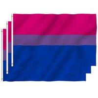 3 * 5FT LGBT Радуга Флаг Печать Бисексуальные флаги Полиэстер с латунными втулки HH21-330