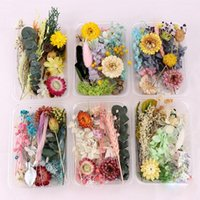 Decorative Flowers & Wreaths 1 Box Real Dried Flower Dry Plants For Candle Epoxy Resin Pendant Making DIY Accessories