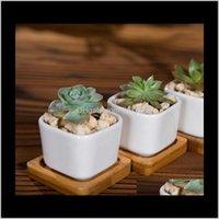 Toplantiçleri Malzemeleri Veranda, Çim Bahçe Bırak Teslimat 2021 Seramik Mulient Tencere Altıgen Kare Mini Beyaz Porselen Çiçeklik Tedarikçiler